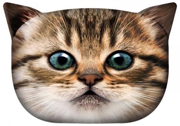 Katze - Gapcio