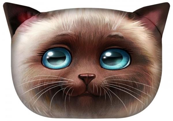 Katze - Lily