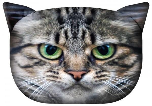 Katze - Borys